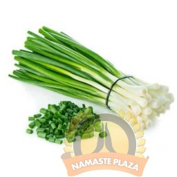 GREEN ONION 1BUNCH