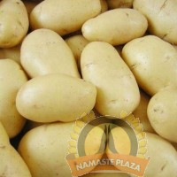 POTATO WHITE REGULAR 2LB