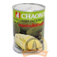 Chaokoh Green Jack Fruit 20OZ